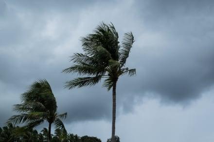 Se forma la tormenta tropical Iota que podría seguir el camino mortal de Eta