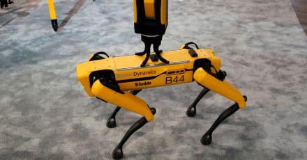 Envían perro robot para olfatear u detectar la radiación en Chernobyl