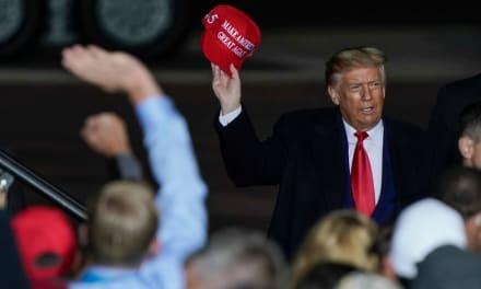 El margen final de la victoria de Trump en Florida es de 3,3 %