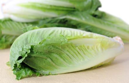 Ordenan recall de lechuga romana por riesgos de E. coli en 19 estados de EE.UU.