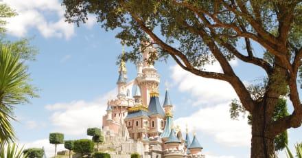 Crean una réplica de montaña rusa de Disneyland en su patrio trasero