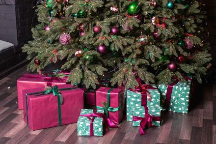 Los arbolitos navideños de Maribel Guardia, Andrea Legarreta y Érika Buenfil se quedan 'cortos' junto al de Kylie Jenner
