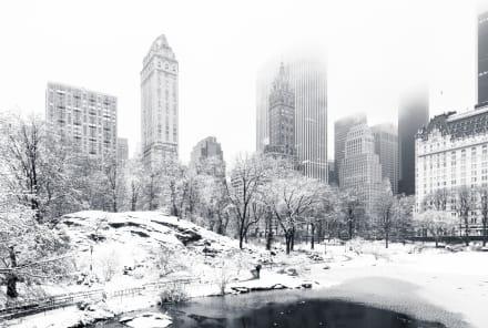 Pronostican una blanca Navidad desde Virginia hasta Nueva York por intensa tormenta invernal