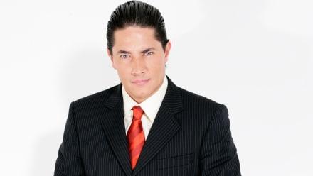 Fernando del Rincón   Biografía