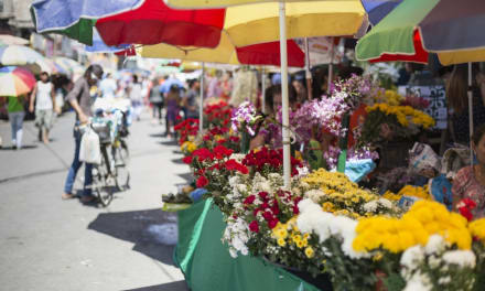 Conductor acelera para robarle ramo a vendedor de flores en pleno Día de las Madres