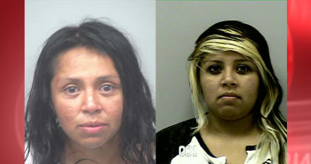 Crónica: Arrestan a Perla Andrade por pegarle a una embarazada