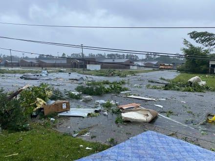 Tormenta Claudette: confirman dos muertos por caída de enorme árbol