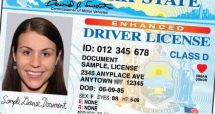 Alerta: tachan de falsas nuevas licencias de conducir en Nueva Jersey