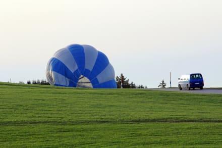 Accidente de globo aerostático en EEUU: muere el piloto y se salvan cuatro pasajeros