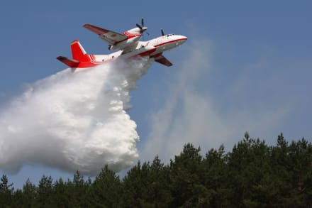 Un avión se estrella en Turquía al intentar apagar un incendio, mueren los 8 tripulantes (VIDEOS)