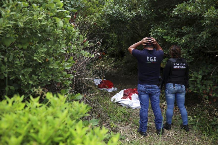 Cementerio clandestino en Veracruz con al menos 174 cráneos ya había sido excavado en 2017 (FOTOS Y VIDEO)