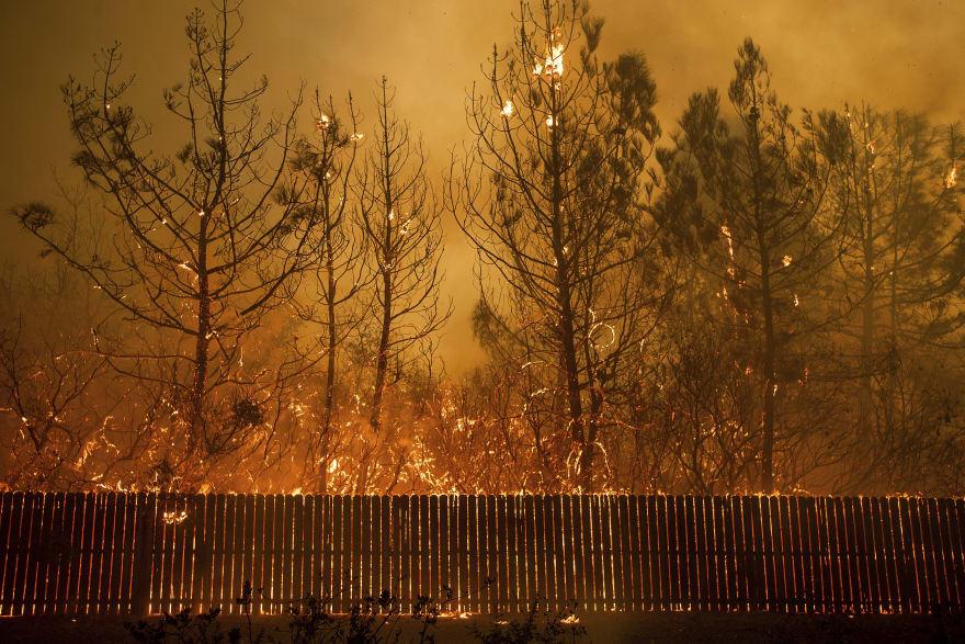 Celebridades evacuan sus casas tras ser afectadas por los incendios en California