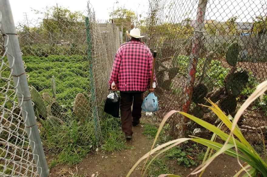 Mujer exige documentos a jardinero hispano y es considerada como racista (VIDEO)