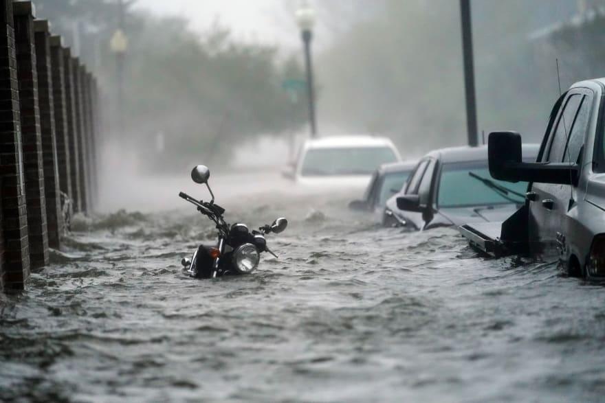 Después de Sally: Inundaciones, muerte y caimanes (VIDEO y FOTOS)
