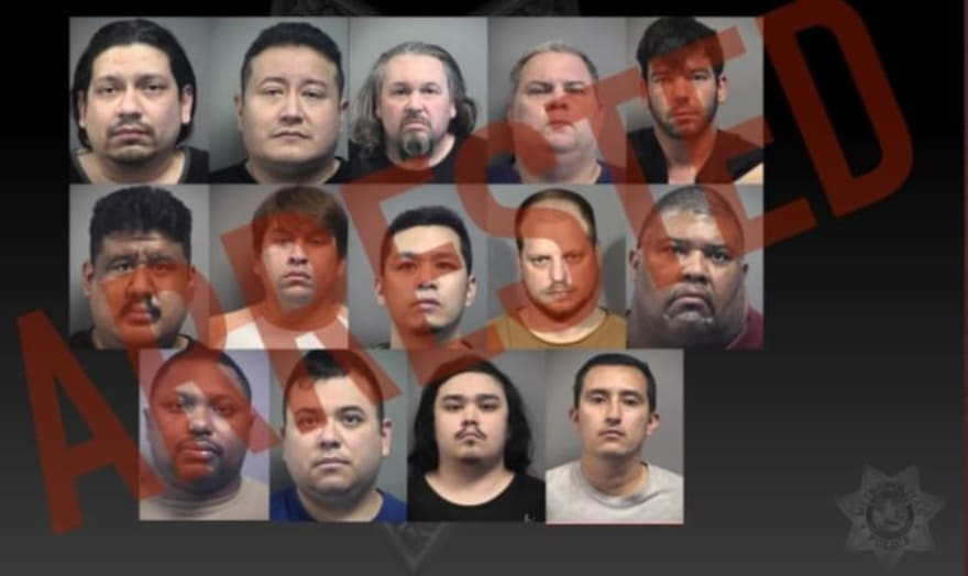Caen 14 presuntos depredadores sexuales, incluyendo un maestro jubilado