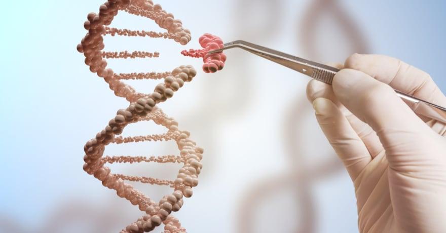Pruebas rápidas de ADN, un arma que salva fauna y encarcela a traficantes