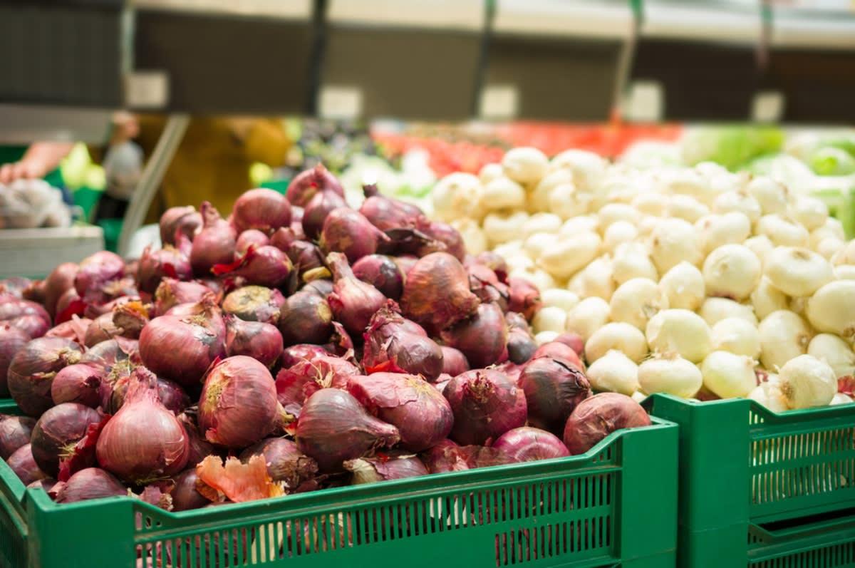 Confirman cientos de enfermos por consumo de cebollas con salmonella