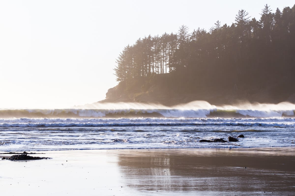 Descubren cerebro en playa de Wisconsin, sospechan que se usó en ritual