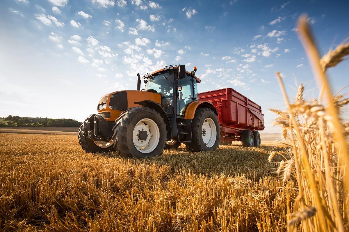 Muere ahogado pozo estiércol granja Denver Colorado denuncia