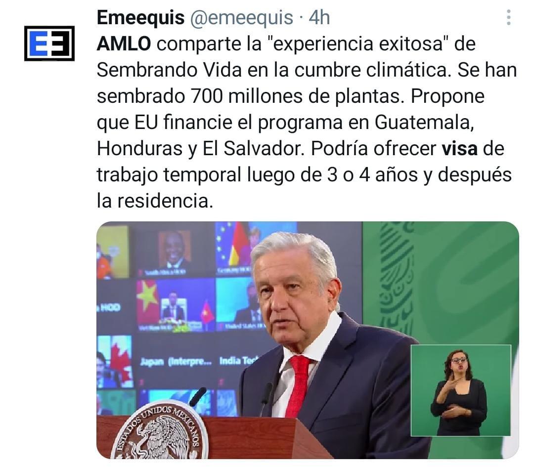 AMLO Visas, árboles Biden