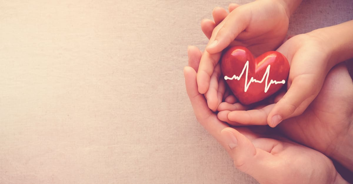 Seguro de vida adult and child hands holding red heart with cardiogram, health care, love and family insurance, world heart day, praying concept