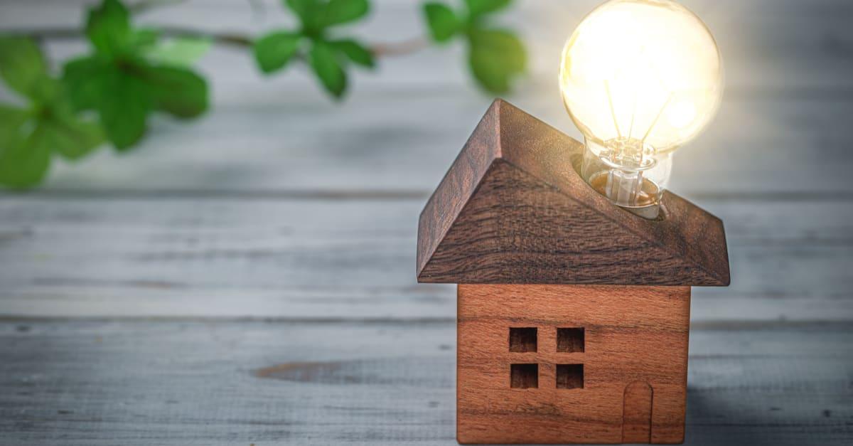 Miniature house and light bulb