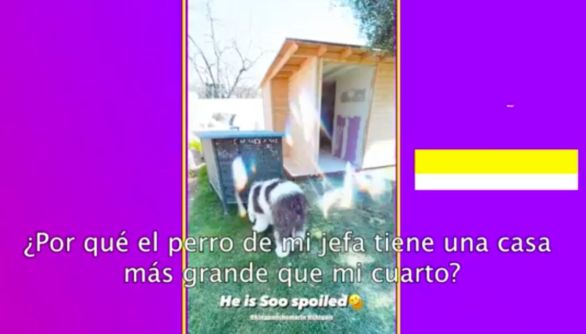Chiquis Rivera construye casa para su perro (IG)