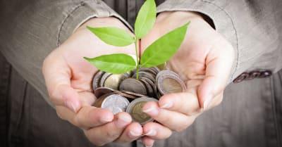 Empresario cubre planta de cultivo con dinero de monedas