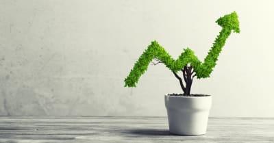 Planta pequeña en forma de maceta con forma de gráfico de crecimiento