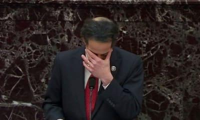 Jamie Raskin, legislador, juicio