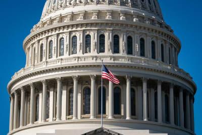 Trump Cheque 2000 Coronavirus, Congreso