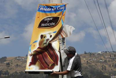 helado de cobayo