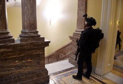 FBI protestas elecciones, protestas armadas, Ataque Capitolio