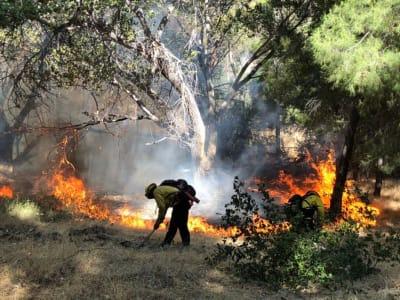 Monstruoso incendio en California obliga a hacer evacuaciones