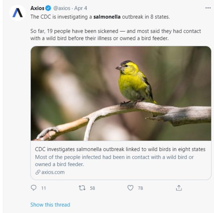 Salmonella Pájaros Silvestres CDC