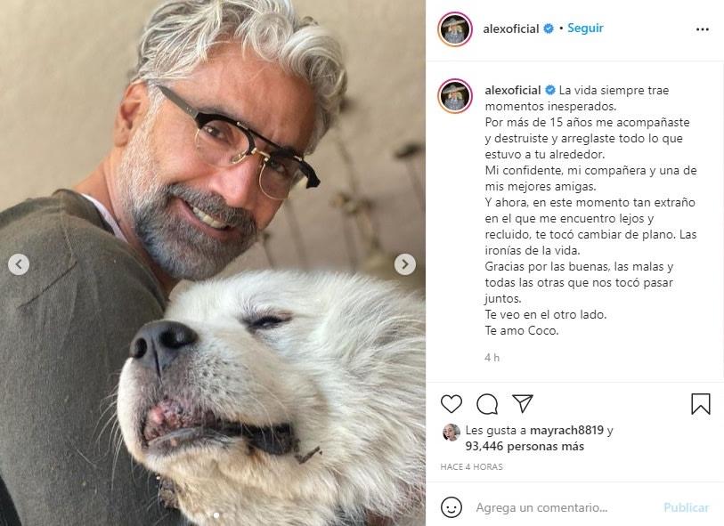 Alejandro Fernández de luto perro Coco 3