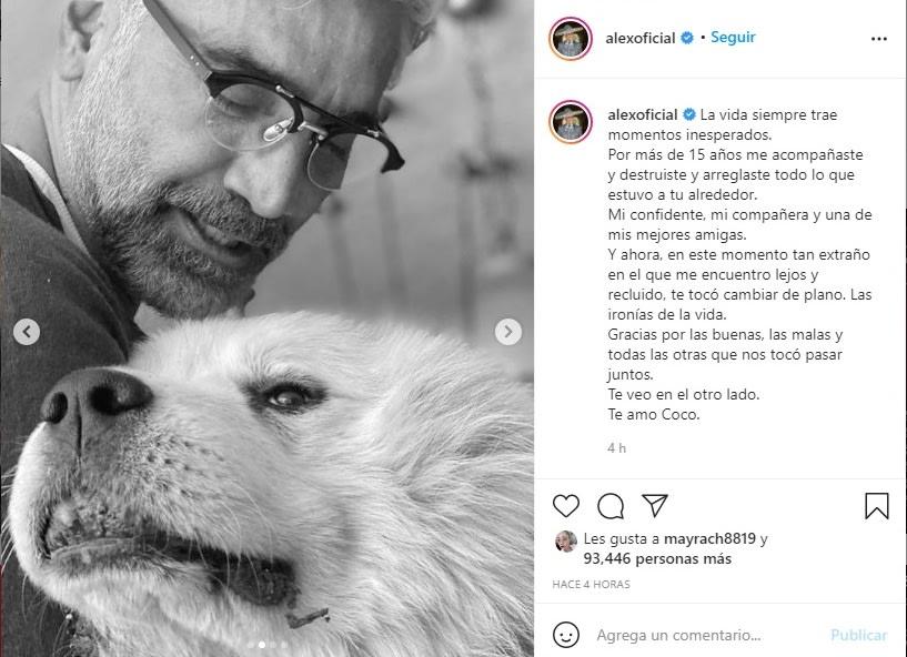 Alejandro Fernández de luto perro Coco 2