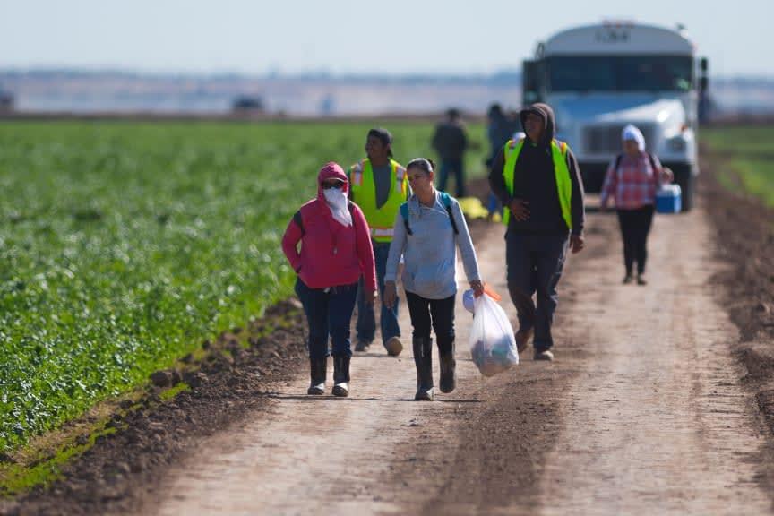 Reforma Migratoria Puntos, Biden, Inmigrantes, Beneficios