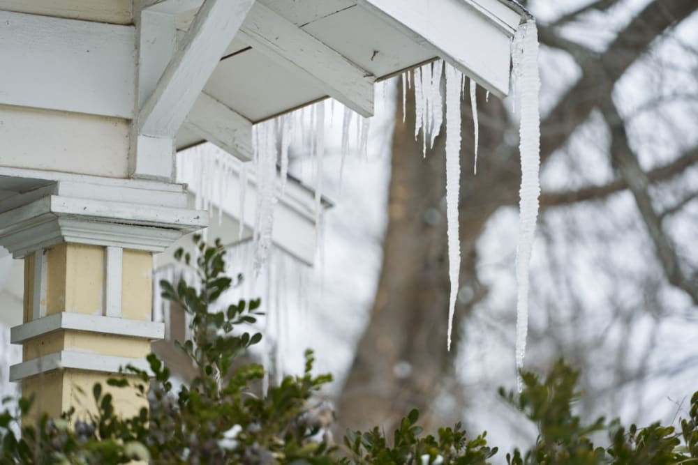 Predicción temporada invernal: Pronostican precipitaciones