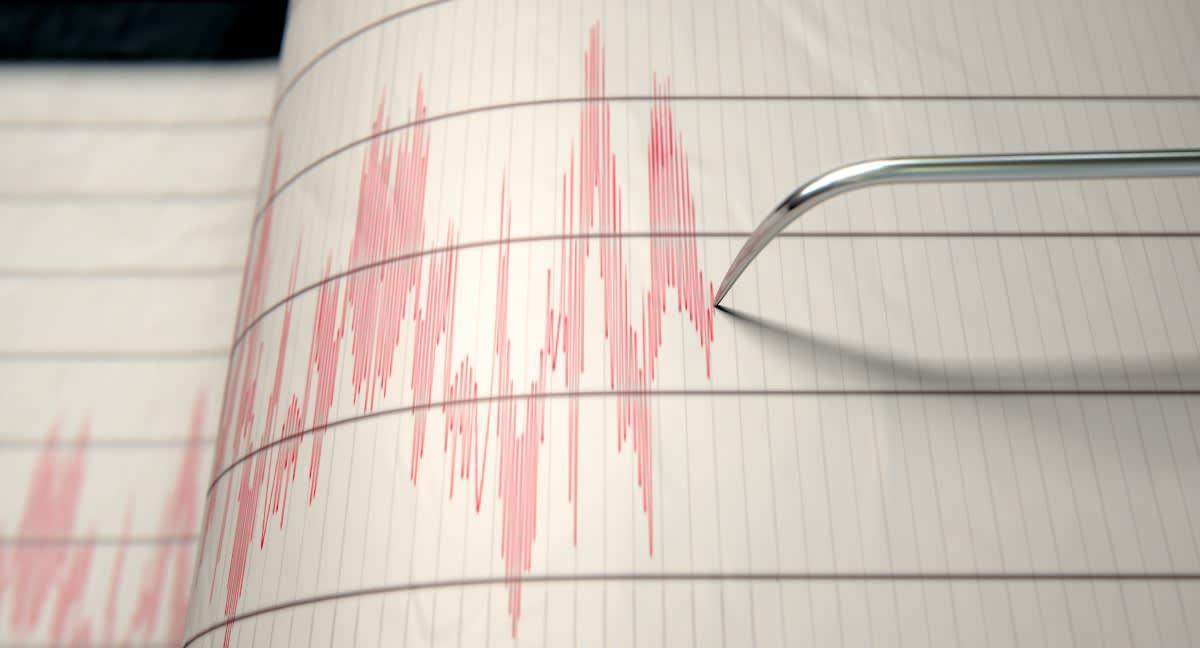 Fortuna temblor