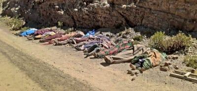 19 muertos accidente autobús: Se despeñó por un barranco