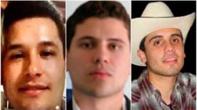 Alfredillo los más buscados 2 DEA hijo del Chapo Guzmán