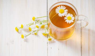 té de manzanilla tés e infusiones
