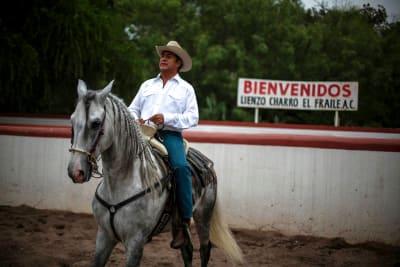 Jaime Rodriguez, El Bronco