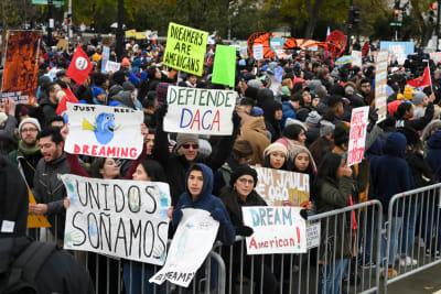 Afectados por fallo contra DACA serán miles