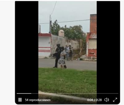Abejas africanas atacan mujer y policía la resguarda