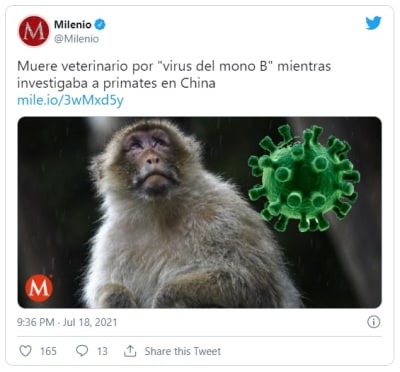 China confirma la primera muerte por el raro virus del mono