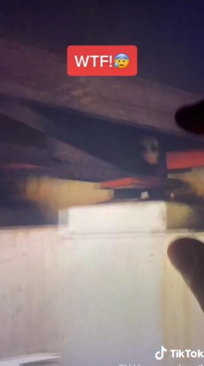 La supuesta figura demoniaca fue encontrada de bajo de un puente en Nueva York