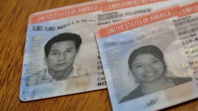 seis estafas de inmigración