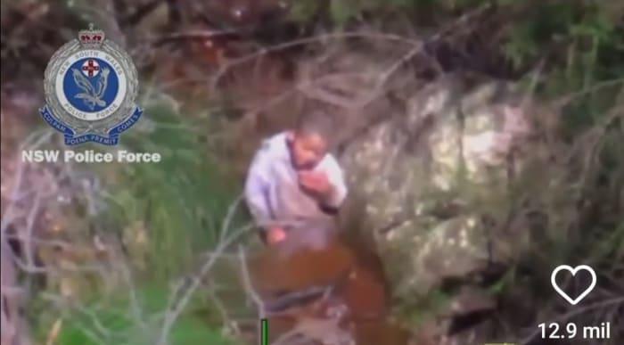 Niño desaparecido en bosque